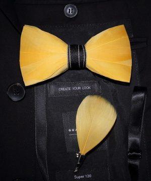 Luxusná sada - pánsky motýlik z vtáčích pierok a brošňa na šaty model_01