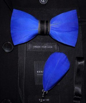 Luxusná sada - pánsky motýlik z vtáčích pierok a brošňa na šaty model_04