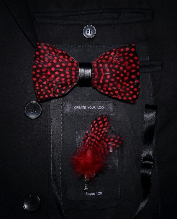 Luxusná sada - pánsky motýlik z vtáčích pierok a brošňa na šaty model_15